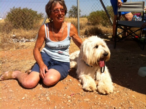 This is me with Diane from PUPPY RESCUE IN SPAIN.  Diane looked after me before I came to England to live!
